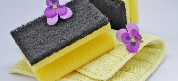 """title=""""kangen water cleans, disinfects"""""""