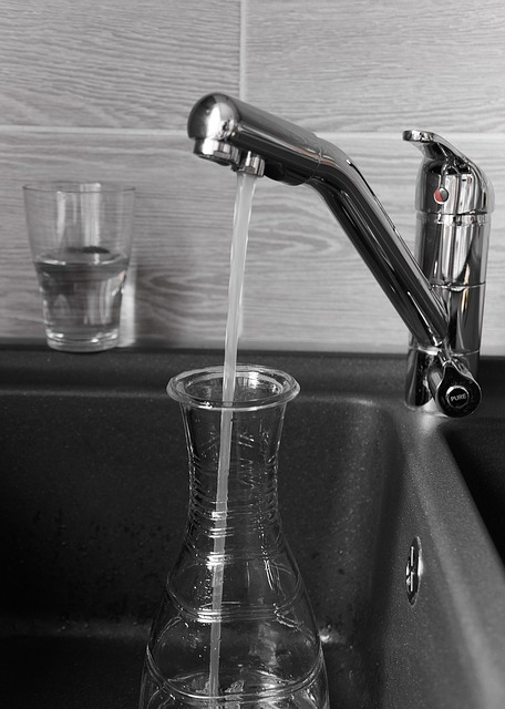 Who Makes the Best Water Ionizer?